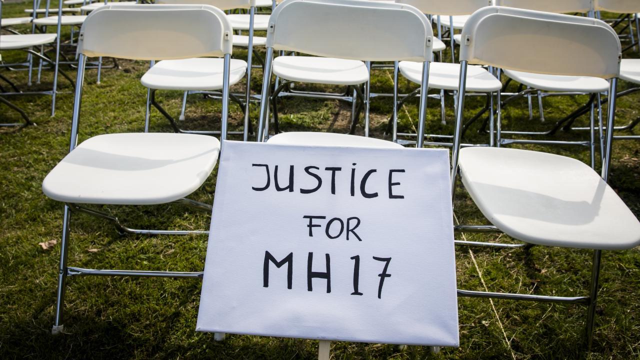 Россия должна признать ответственность за гибель MH17